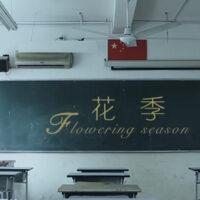 Flowering Season 花季